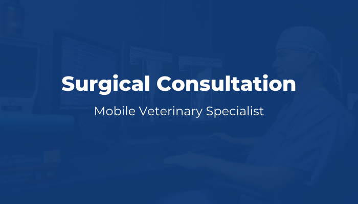 MVS - Surgical Consultation Product Image